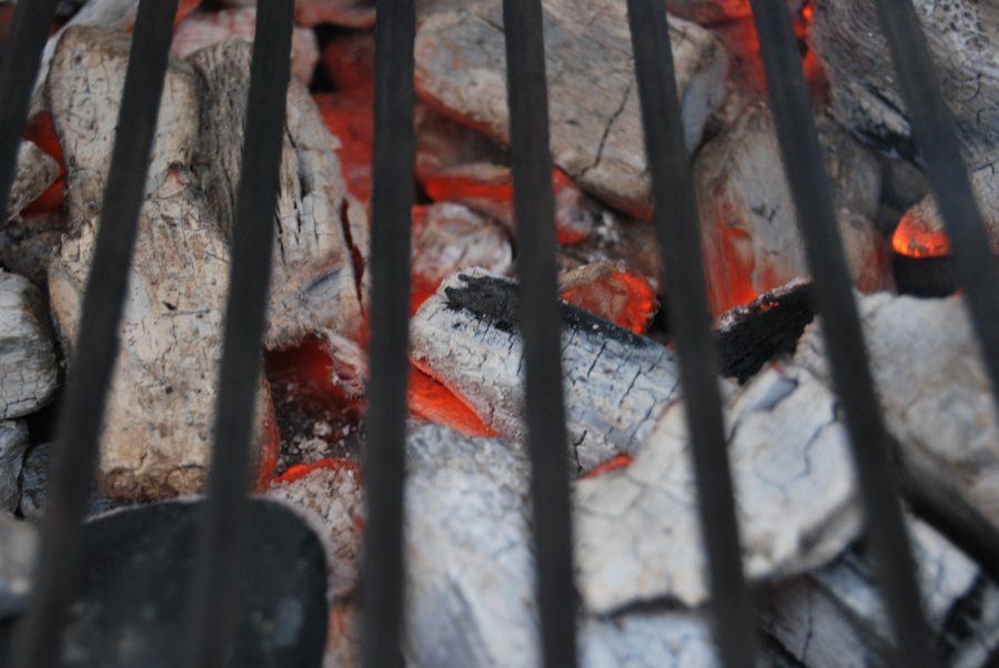 Gas Oder Holzkohlegrill Eine Glaubensfrage : Glaubensfrage holzkohle oder grillbriketts grillen und chillen